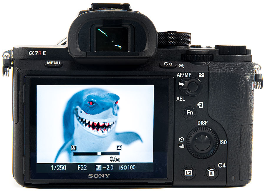 Sony a7R Mark II Underwater Review - Underwater Photography