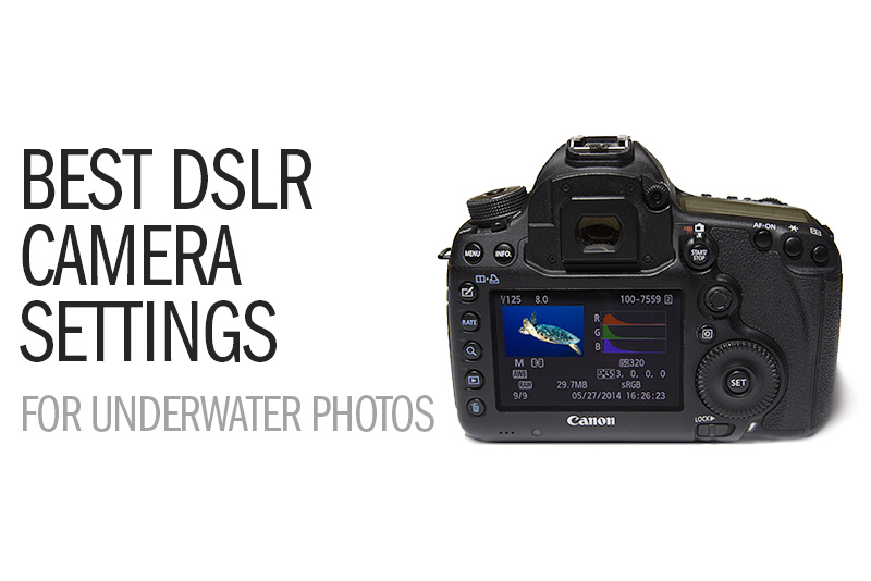 Beginner DSLR Photography Class - livewonderful.com