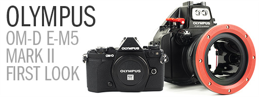 Olympus E-M5 Mark II Underwater Photo & Video Review - First Look and Details