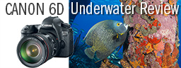 Canon 6D Underwater Review