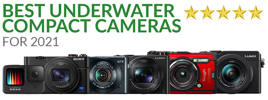 Best Underwater Compact Cameras for 2021 - Our favorites from cheap to advanced