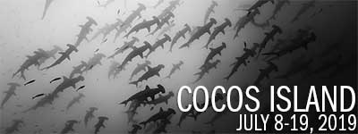 Cocos Island, Costa Rica - July 8 - 19, 2019