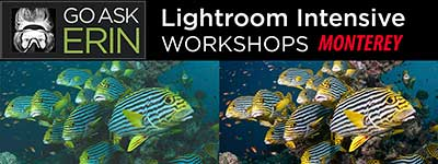Intensive Lightroom for Beginners - Oct. 19-21, 2018