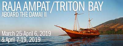 Raja Ampat / Triton Bay, Indonesia - March 25 - April 6, & April 7-19, 2019