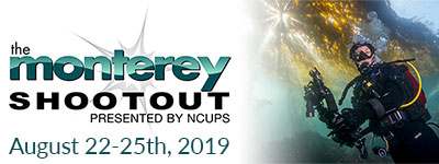 Join Us At the 2019 Monterey Shootout - August 22-25, 2019