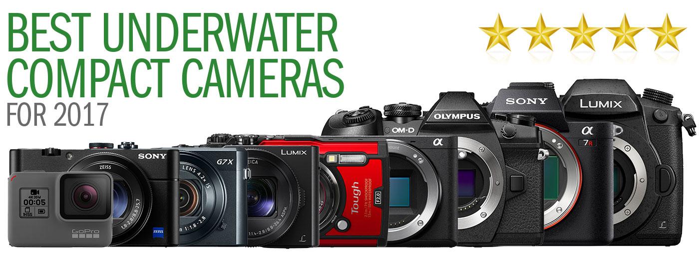 Best Underwater Cameras of 2017: Compacts & Mirrorless ...