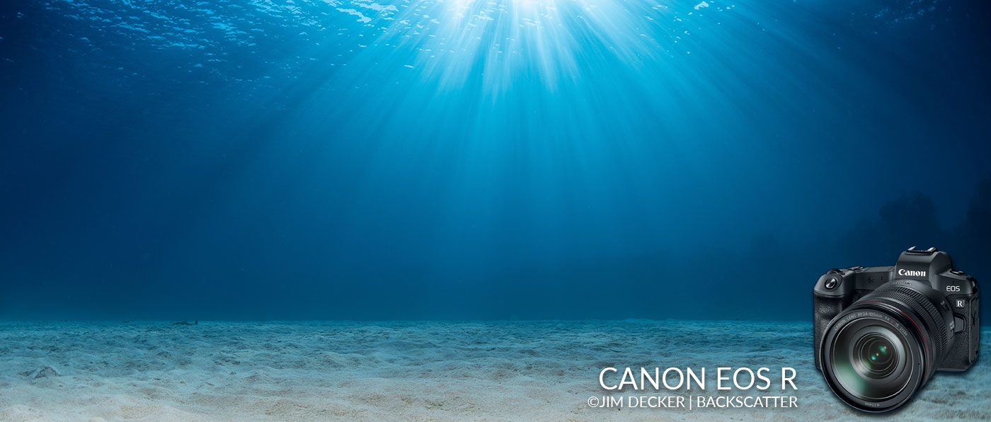 Canon EOS R Underwater Camera Review