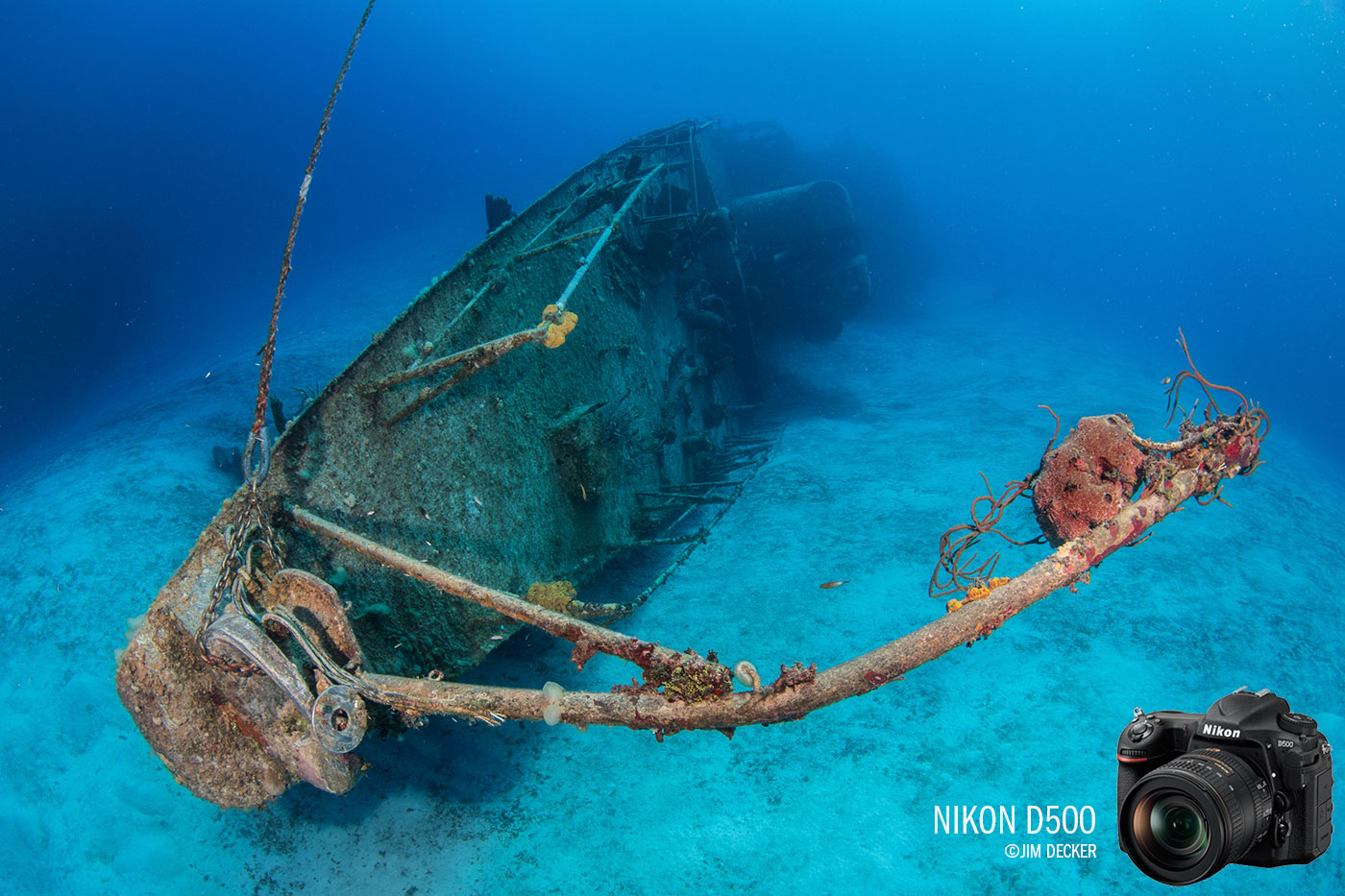 Nikon D500 Underwater Camera Review