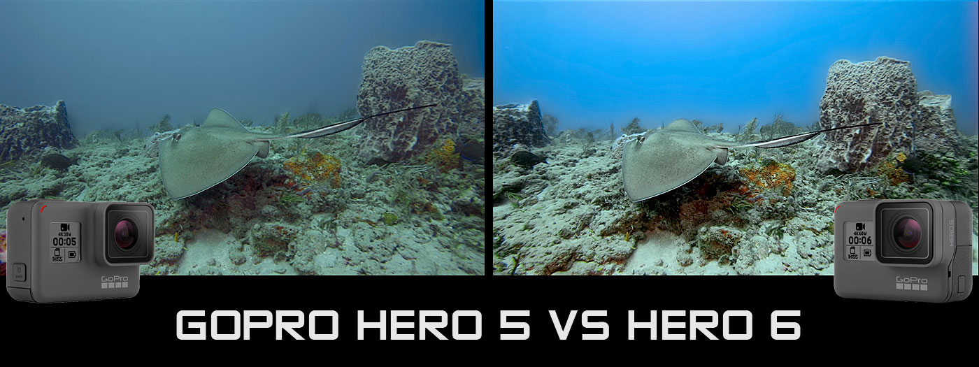 GoPro Hero 6 Vs 5 Underwater Camera Review