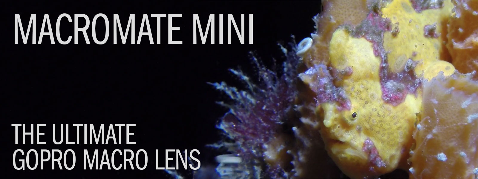 MACROMATE MINI - The Ultimate GoPro Macro Lens