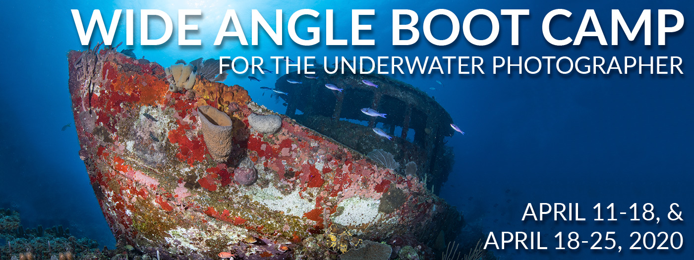 Wide Angle Underwater Photography Boot Camp – Roatan – April 11-18 & 18-25, 2020