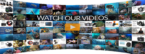 View Our Video Library