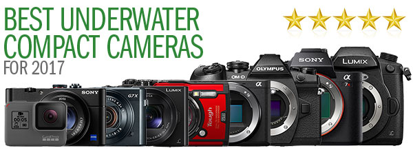 Best Underwater Cameras of 2017: Compacts & Mirrorless