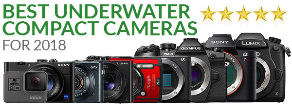 Best Underwater Cameras of 2018: Compacts & Mirrorless Cameras