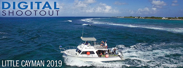 Join Us At the 2019 Digital Shootout in Little Cayman - June 15-29, 2019
