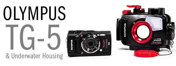 Olympus TG-5 First Look & Review