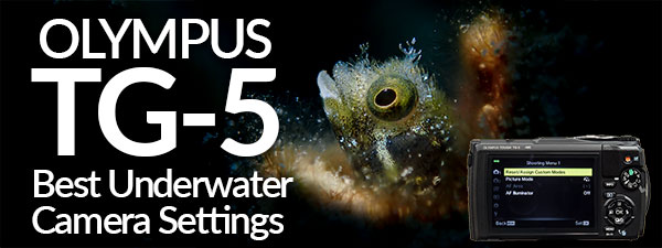 Olympus TG-5 Best Underwater Camera Settings