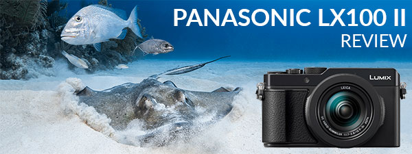 Panasonic LX100 II Underwater Camera Review