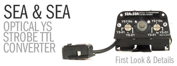 Sea & Sea Optical YS TTL Converter First Look and Details