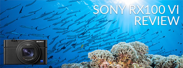 Sony RX100 VI Underwater Camera Review