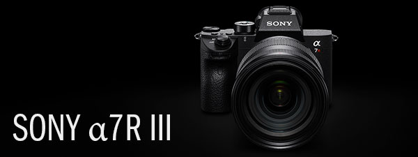 New Underwater Camera Release Alert: Sony a7R III