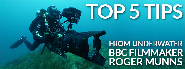 Top 5 Tips From a BBC Underwater Filmmaker