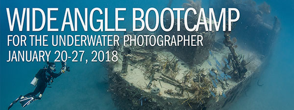 Wide Angle Underwater Photography Boot Camp – Roatan – January 20-27th, 2018