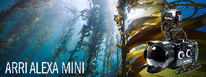 Arri Alexa Mini Underwater Camera & Nauticam Housing Review