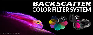 Introducing the Backscatter Color Filter System