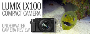 Panasonic Lumix LX100 Underwater Camera Review