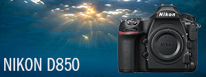 Nikon D850 Underwater Camera First Look and Review