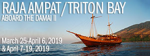 Raja Ampat / Triton Bay, Indonesia – Dive Damai II - March 25 – April 6, & April 7-19, 2019