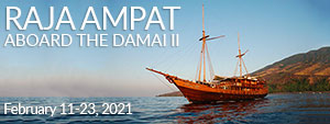 Raja Ampat, Indonesia - Dive Damai II - February 11-23, 2021