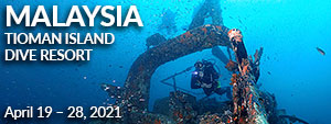 Tioman Island Dive Resort, Tioman Island, Malaysia - April 19-28, 2021