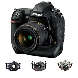 Nikon D5 Housings