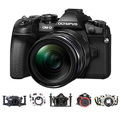 BEST UNDERWATER CAMERAS OF 2017: Olympus OM-D E-M1 II Camera
