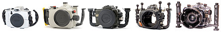 Canon 7D Underwater Housing from Seacam, Subal, Sea & Sea, Ikelite, and Nauticam
